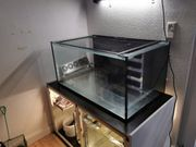 Meerwasser Aquarium Komplett 400l Seewasser