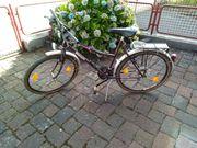 Damenrad Bianchi