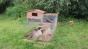 Kaninchenstall und Außengehege