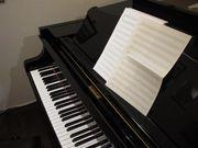 Musiktheorie Gehörbildung Nachhilfe Musik