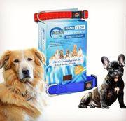 Hundehalsband Pozitron Plus
