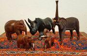 5 Kenia Elefanten Nashorn Herde