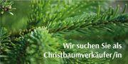 Christbaumverkäufer für Dezember 2019 --Kirchseeon