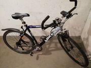 Herren - Trekking Bike Off Road
