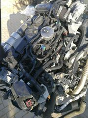 Motor Ford Transit Connect 1