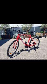 Ducati EBike Sport