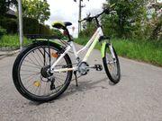 Gut erhaltenes Kinder-Trekking-Bike Leader Fox