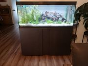 Verkauf mein Eheim Aquarium Vivaline