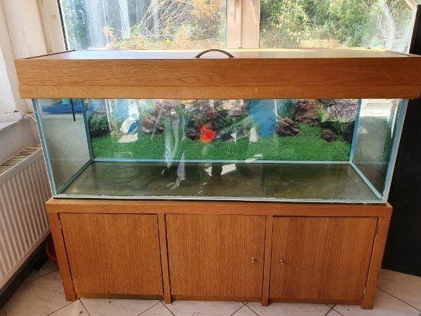 Aquarium 1 5m