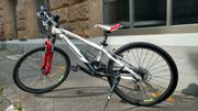 Tolles MTB 24 Zoll Steppenwolf