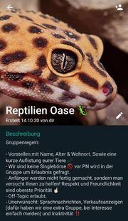 Reptilien Amphibien WhatsApp Gruppe
