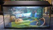 Aquarium 54 Liter 60x30x30 cm