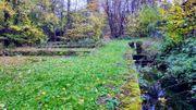 Freizeitgrundstück mit See-Ebersbach Fils