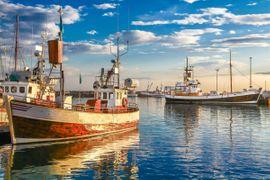 Bild 4 - Immobilienmakler Insel Rügen seit 25 - Glowe