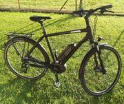 E-Bike Bosch Performance Line
