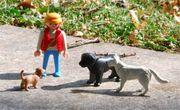 Hundebetreuung mit 24 Std Familienanschluss