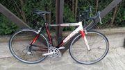 Rennrad Rahmen 54
