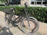 Pegasus 28 Zoll Damen-Fahrrad großer