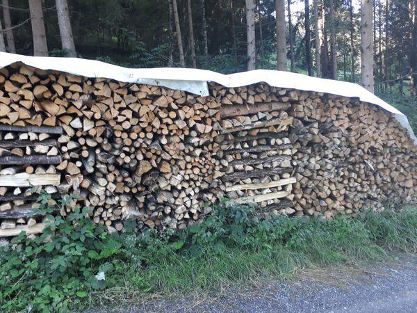 Brennholz Weich