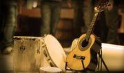 RODA DE PAGODE SAMBA - Musiker