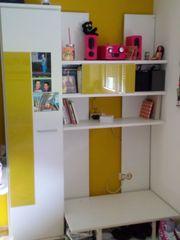 TV Möbel mit Bücherschrank für