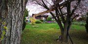 Gartengrundststück mit Gartenhaus in Bretten