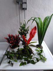 Terrarium Aquarium Kunstpflanzen