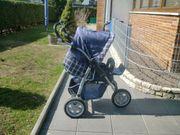 Kinderkombiwagen Novus 3 Dreiradwagen von