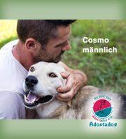 Cosmo - bedeutet der Ruhige
