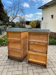 Bienen Beute dnm