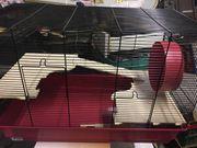 Hamsterkäfig mit Zubehör neu