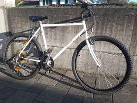 28 Zoll Jugend Fahrrad MTB in Lauterach Jugend Fahrräder