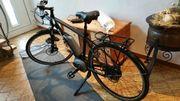 E-Bike Steppenwolf mit Riemenantrieb und