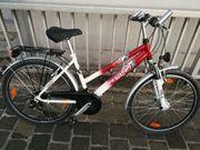 Fahrrad Pegasus Avanti 26 Zoll