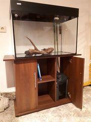 Aquarium 150l mit Außenfilter und