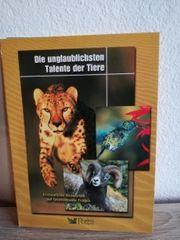 3 DVD Talente der Tiere