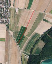 Ackerflächen Gemarkung Neuhofen