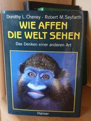 Wie Affen die Welt sehen -
