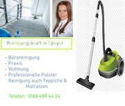 Nette Putzfrau Wohnung Büroreinigung Praxis