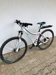 Centurion Damen Mountain Bike EVE