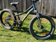 Cooles Specialized Fatboy - 20 Zoll