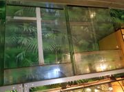 Terrarien aus Glas zvk