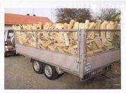 Brennholz BUCHE OFENFERTIG 66EUR SRM -