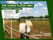 Offenstall Pferdebox Box Frei Pferd -