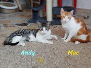 Mac und Andy zwei süße