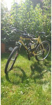 Fahrrad 2 Takt Moped Mofa