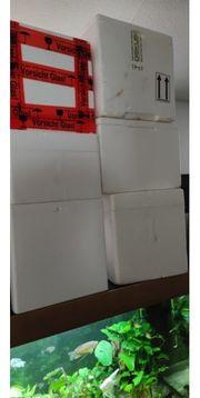 Styropor Kisten