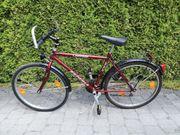 Mountainbike Fahrrad Rad rot metallic