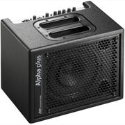 AER Acoustic-GUITAR Vocal-AMP 50w RMS
