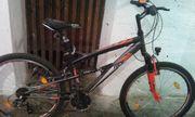 Rex mountainbike Fahrrad